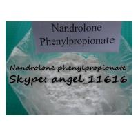 China CAS 62-90-8 DECA Hormone Steroid Nandrolone phenylpropionate For Cutting Cycle NPP wholesale