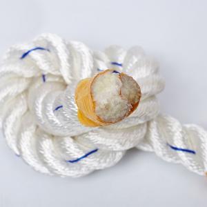 China High Tenacity 3 Strand Twisted Rope Dacron Polyester Packing Eco Friendly wholesale