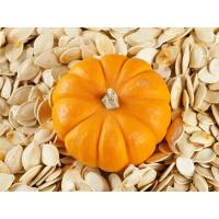 China china food Edible Dry and Raw Seed 9-13cm Pumpkin Seed With High Protein Price wholesale