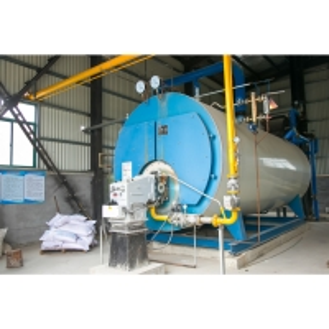 China 2 Ton/H Chain Grate Boiler Block Brick Machine wholesale