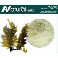 Quality Best Sells Product Seaweed Powder/Fucoidan/Seaweed Extract for sale