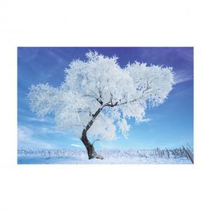 China 0.6mm PET 40*60cm 3D Lenticular Poster / 3D Depth Effect Lenticular Landscape Poster wholesale