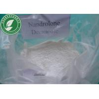 China Bulking Muscle Mass Steroid Hormone Nandrolone Decanoate CAS 360-70-3 wholesale