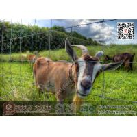 China Field Fence   Cattle Fence   Deer Fence   Sheep Fence   China Supplier wholesale