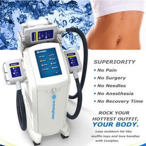 China Non Surgical Cryolipolysis Fat Freezing Machine / Body Slimming Equipment 230VAC 50Hz wholesale