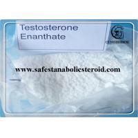 Buy cheap Bulking Cycle Steroids Test E 99% Primoteston Depot  CAS 315-37-7 for Muscle Growth from wholesalers