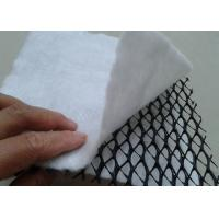 China HDPE 3D Composite Geonet / Geocomposite Drain Width 1 - 4m with white geotextile wholesale