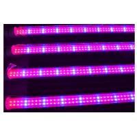 China Full spectrum 18w T8 led grow light for plant growth , flower and vegetable wholesale