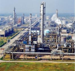 Fujian Dongnan Chemical Co.,Ltd.