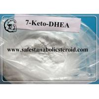 China 7 Keto DHEA Raw Steroid Powders CAS 566-19-8 7-Keto-Dehydroepiandrosterone Hormones wholesale