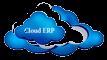 China China ERP System Online Company logo