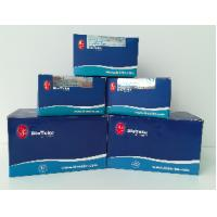 China FFPE RNA Extraction And Purification Kit Isolate MicroRNA From FFPE Samples wholesale