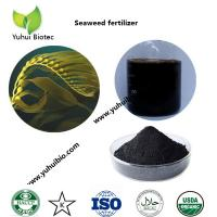 China best seaweed fertilizer,liquid kelp organic seaweed fertilizer, seaweed base fertilizer on sale