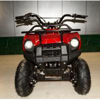 China 49cc New Model small ATV,2-stroke.air-cooled.hot sale models in Eurpoe.good quality. wholesale