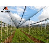 Quality Shandong antai produce HDPE with UV shade net green dark colors and hdpe for sale