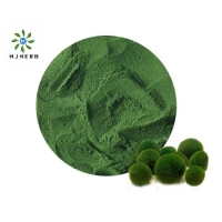 High Protein Organic Chlorella Weight Loss For Healthcare