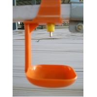 Wholesale Broiler Water Drip Cup for Poultry Farm Equipment from china suppliers