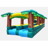 China inflatable tropical slide, Hot Playing Durable Special Inflatable Slip Slide wholesale