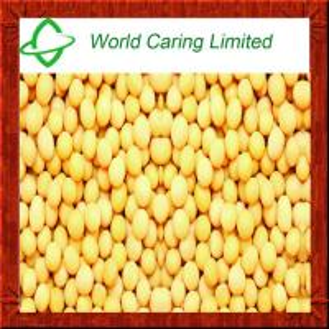 China High Purity herbal ingredient 98% Natural Daidzein CAS#486-66-8 for women's health on sale