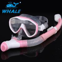 Buy cheap Adults Dive Mask Snorkel Set With Panoramic Diving Mask & Dry Top Snorkel from wholesalers