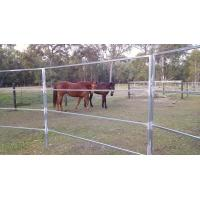 China 22 Portable Horse Stall Panels Inc Gate, Round Yard, Cattle Fences, Corral 15m Diameter wholesale