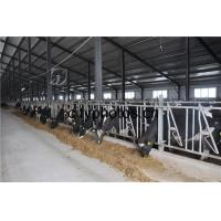 China Poultry Farm Building Structure wholesale