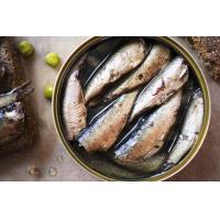 China seafood Canned sardines fish canned food wholesale