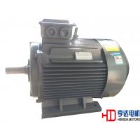 China Explosion Proof Chemical Industrial Electric Motors / Electrical Induction Motor on sale