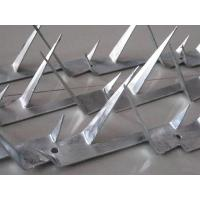 Wholesale Galvanized Anti Climb Security Spikes For Walls And Fences Customized Length from china suppliers