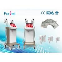 China vacuum therapy cellulite treatment machine, cold lipolysis machine for fat freeze wholesale