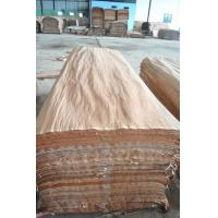 1270*2550*0.3mm natural gurjan face veneer,keruing veneer for india market ,Burma Face Veneer
