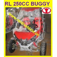 RL250DZ/250DS Top quality buggy/go kart