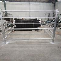 China Cattle Panels 50mm * 50mm RHS * 1.6mm thickness wholesale