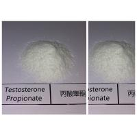 China Cutting Cycle Steroids Testosterone Phenylpropionate For Muscle Enhancement wholesale
