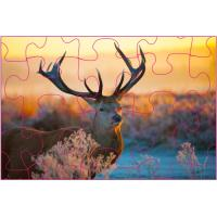 China Educational Kids 3D Puzzle Games / 3D Lenticular Printing Jigsaw Puzzles wholesale