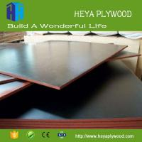 China 2018 new wood glue plastic coated plywood concrete form plywood weight shuttering plywood wholesale