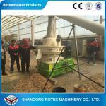Biomass Wood Pellet Machine in Malaysia , Wood Pelletizing Equipment