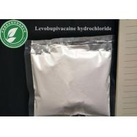 China Local Anesthetic Powder Levobupivacaine Hydrochloride CAS 27262-48-2 wholesale