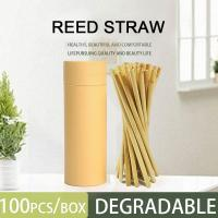 China Wholesale ECO Customized Logo Natural Disposable Drinking Reed Straw 20cm on sale