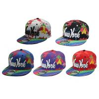 China 6 Panel Screen Printed Hip Hop Baseball Caps With 3D Embroidery New York wholesale