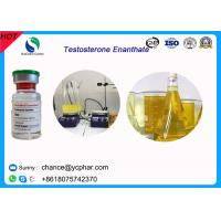 China High Purity Injectable Testosteroneenanthate / Test E Steroids 100mg/Ml 300mg/Ml For Bodybuilding wholesale