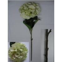 China New Arrival: Silk Hydrangea, Top Quality, Cream&Green wholesale