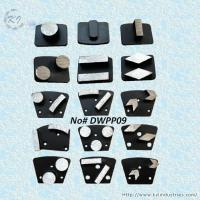 China Replaceable Diamond Grinding Pads - DWPP09 wholesale