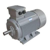 China high voltage motor wholesale
