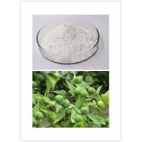 30220-46-3 Ingenol Natural Cosmetic Ingredients Makeup Ingredients 98% Purity