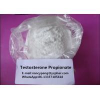China Medical Testosterone Steroids Testosterone Propionate White Powder wholesale