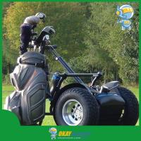 Golf Car, Go Cart, Golf Buggy, Electric Scooter for Golf Course, 2015 New