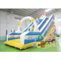 China Amusement Playground Aladdin Inflatable Slides Children Inflatable Water Slide Rental wholesale
