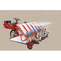Buy cheap Rice transplanter,model 2Z-6300B,rice transplanting machine. from wholesalers