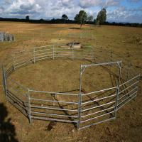 China Portable Horse Stall Panels 30 METER Heavy Duty 6 Oval Rail - Cattle Yard Victoria wholesale